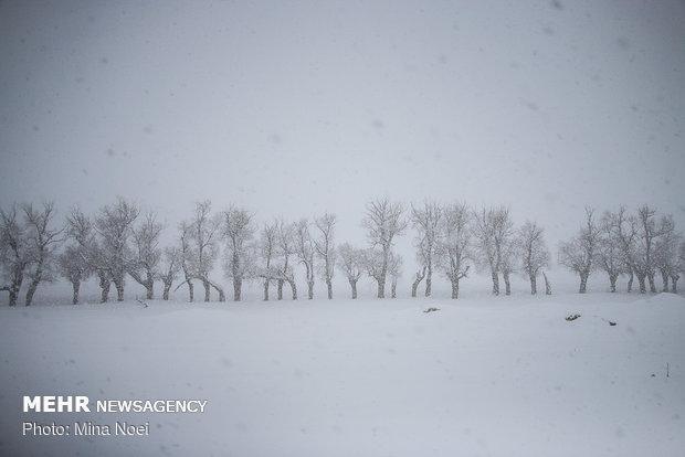 7 نفر از اهالی شهرستان کوهرنگ در برف و کولاک مفقود شدند